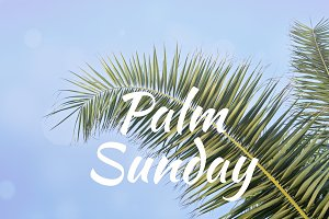 Text PALM SUNDAY and Palm leaves