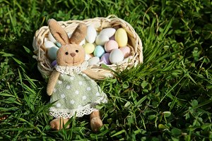 Easter bunny with small basket