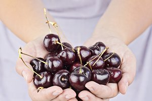 Woman's hands with fresh cherries
