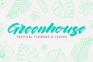 Greenhouse Tropical Flowers & Leaves