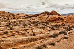 Landscape of Stone Desert