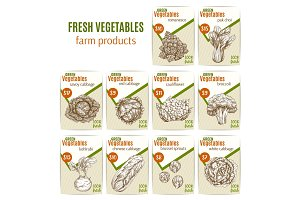 Vector vegetables or veggies sketch price menu