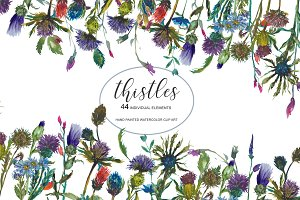 Watercolor Thistle Clip Art Set