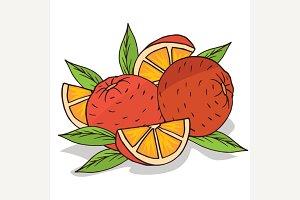Isolate ripe oranges fruit