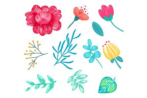 Set of Various Floral Icons on Vector Illustration