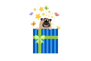 Dog in present box greeting card