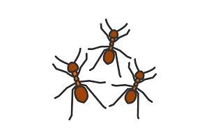 Ants color icon