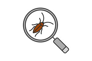 Cockroach searching color icon