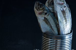 Fresh mackerel on black background.