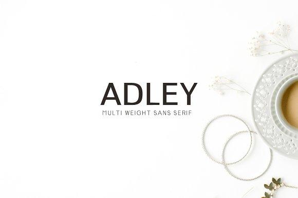 Adley Sans Serif 3 Font Family Pack