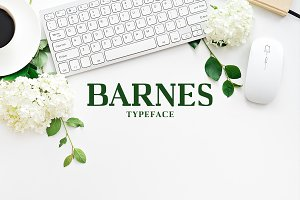 Barnes Serif 7 Font Family Pack