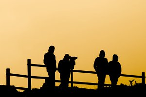 four young at a lookout at sunset