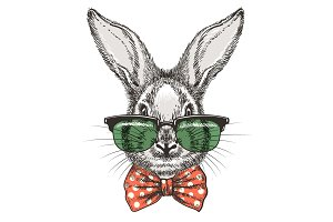 Rabbit in glasses sketch portrait