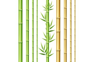 Realistic 3d Bamboo Shoots Set.