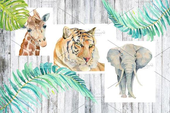 Watercolor animals, leafs, birds