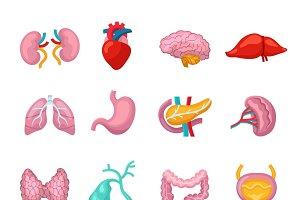 Human organs flat icons set