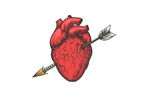 Human heart with arrow tattoo etching