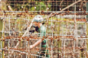 Barbed wire, a fence in prison and the silhouette of a prison guard on the background