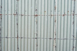 Barbed wire, a fence in prison. Prison concept.