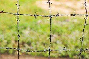Barbed wire, a fence in prison. Prison concept.