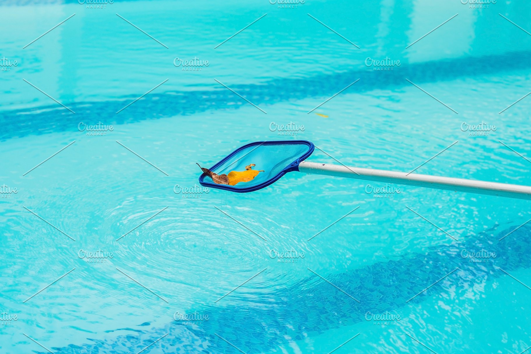 Cleaning swimming pool with cleaning net in the morning