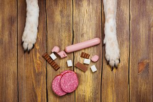 Dogs paws and neb and heap of forbidden dogs meal on wooden background