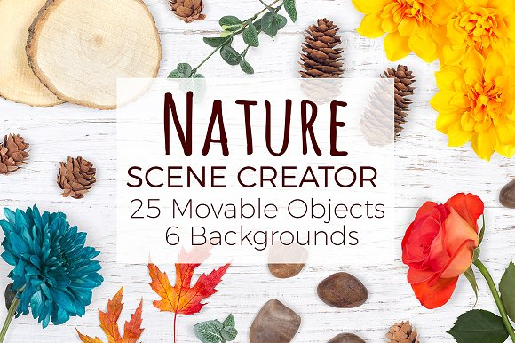 Download Nature Scene Creator - Top View