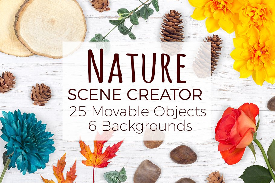 Nature Scene Creator - Top View