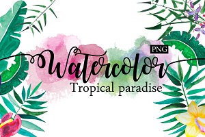 Watercolor. Tropical paradise