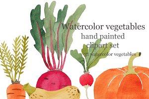 Vegetables watercolor, raster