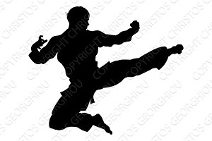 Karate or Kung Fu Flying Kick Silhouette