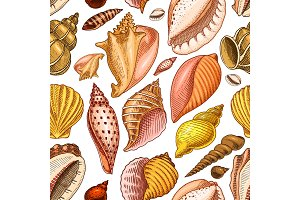 seamless pattern shells or mollusca different forms. sea creature. engraved hand drawn in old sketch, vintage style. nautical or marine, monster or food. animals in the ocean.