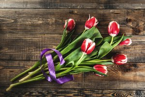 Background with tulip flowers