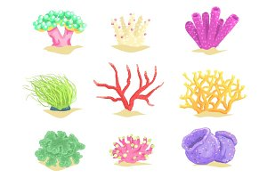 Underwater plants set, seaweeds and aquatic marine algae vector Illustrations