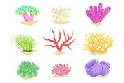 Underwater plants set, seaweeds and aquatic marine algae vector Illustrations
