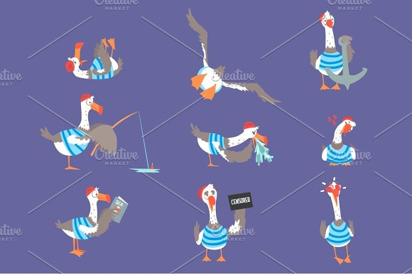 Cartoon seagulls with different poses and emotions set, cute comic bird characters