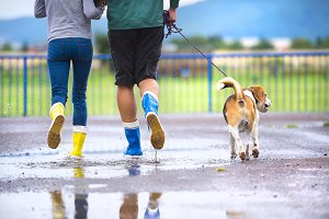 Running in rainy day.