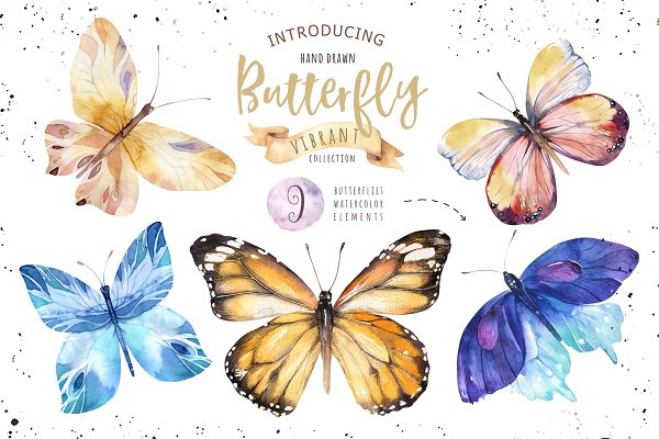 Butterflies vibrant collection