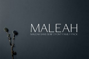 Maleah Sans Serif 2 Font Family Pack