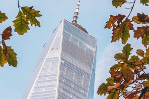 One World Trade Center during autumn