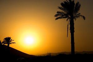 Golden Andalusian sunset