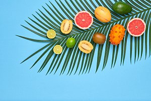Tropical Palm Leaf, Fruits.Bright Su
