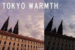 Tokyo Warmth Lightroom Presets