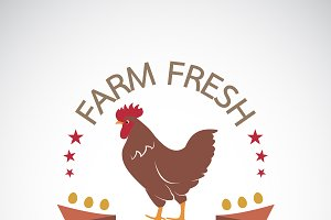 Vector of label with the chicken.
