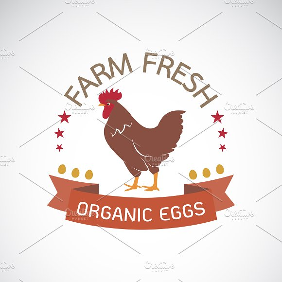 Vector Of Label With The Chicken