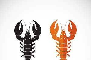 Vector of lobster design. Food.