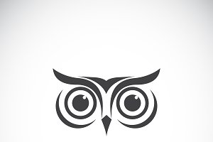 Vector of an owl face design. Bird.