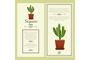 Greeting card with saguaro plant
