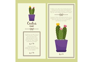 Greeting card with cactus plant