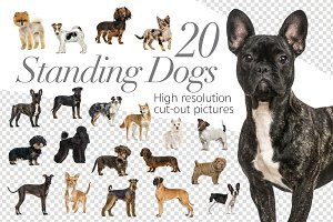 20 Standing Dogs - Cut-out Pictures